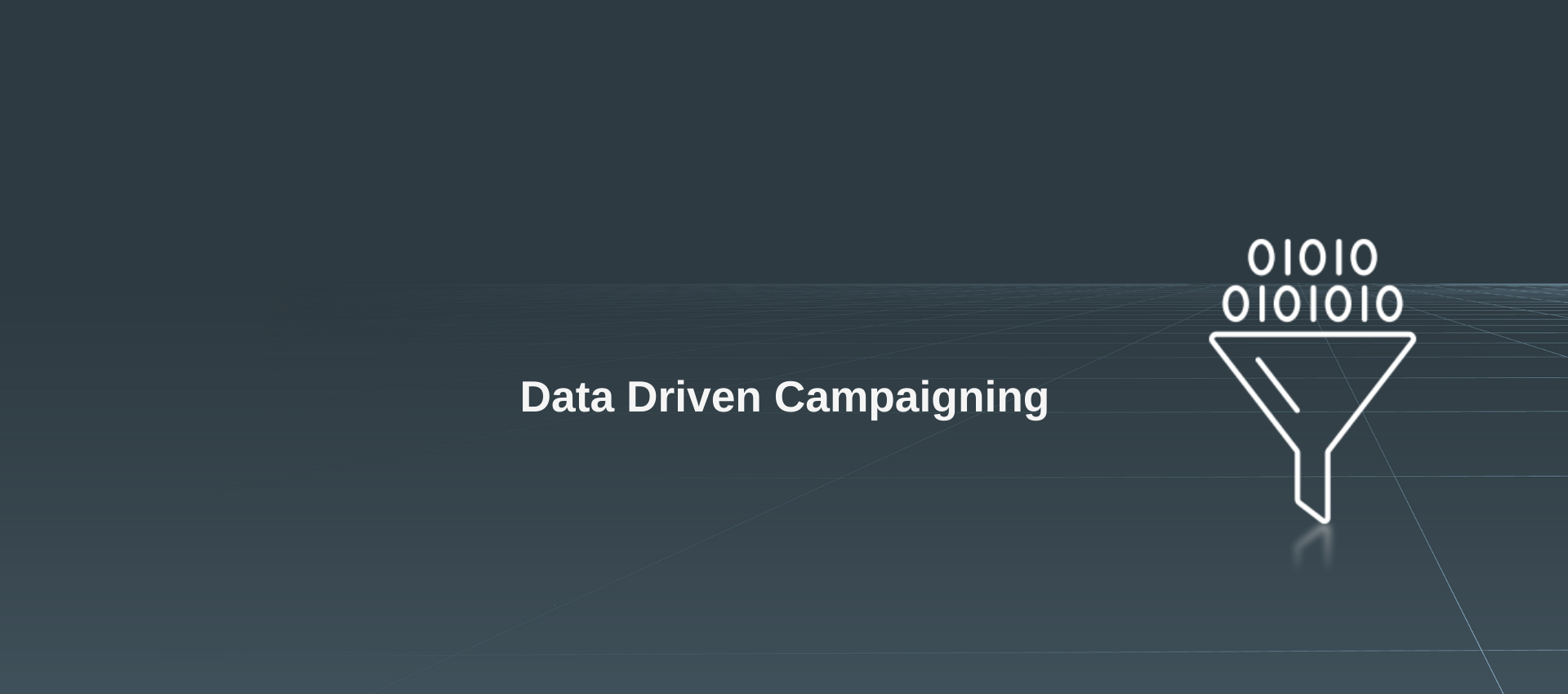 Data Driven Campaigning